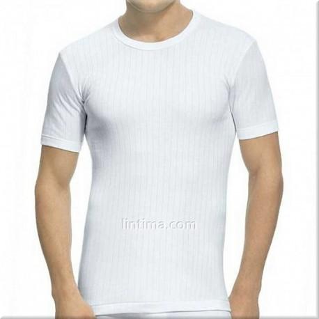 Camiseta de manga corta listada ABANDERADO